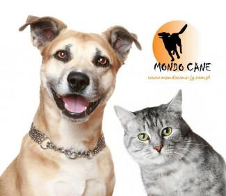 Fundacja na Rzecz Ochrony Praw Zwierząt Mondo Cane